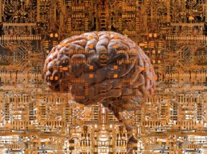 Image of a disembodied brain superimposed on a computer circuit board taken from the web