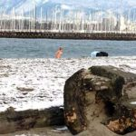 Shot of person emerging from English Bay at Jericho Beach, photo by Jim McPherson, 170101