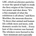 Scan of part of article that appeared in March 2017 issue of Fortean Times re marten martyrs